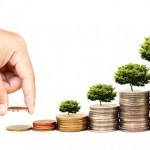 Afla cum sa te instruiesti in domeniul investitiilor si afacerilor